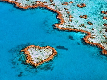 Heart reef - australia, blue water, ocean, heart shape, great barrier reef, reef, nature