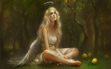 GOLDEN ANGEL - wings, grass, golden, halo, trees, blonde, angel, yellow, forest, dress, fantasy, woman, green, lemons, female, leaves
