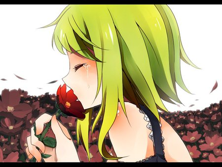 Crying - vocaloid, crying, girl, anime, flowers, gumi