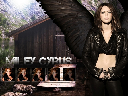miley-cyrus - 2011, cyrus, cant be tamed, miley