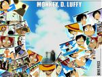 Memories of Luffy