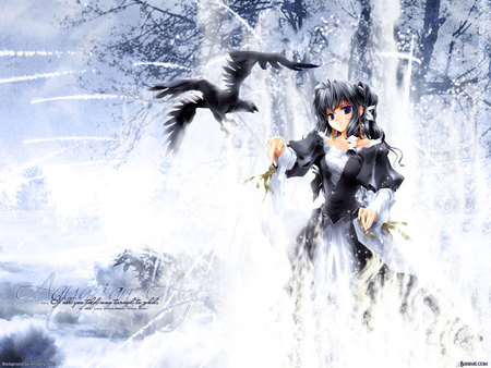 black in white beauty - dress, black, beautiful, cold, gird, girl, snow, anime, white