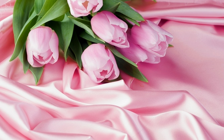 Pink Tulips - with love, pretty, beautiful, still life, photography, green, flowers, beauty, pink tulip, tulips, for you, pink, tulip, lovely, romantic, romance, colors, pink tulips, bouquet, nature
