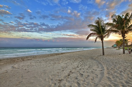 Sunrise - waves, beauty, lovely, colorful, tropical, coast, footprints, beautiful, trees, nature, peaceful, sea, sand, sunrise, clouds, ocean, colors, beach, sky, paw, palm