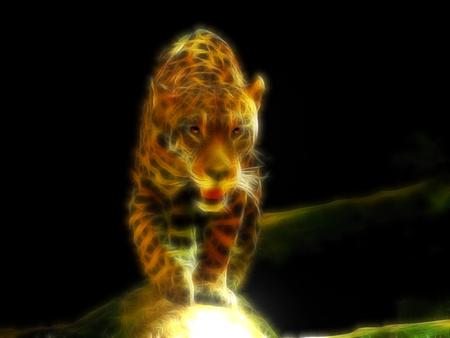 Jaguar - frac, dark, jaguar, wild