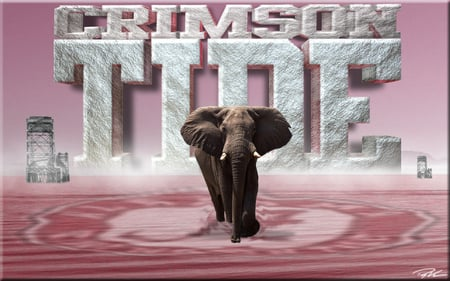 ALABAMA CRIMSON TIDE - crimson tide, alabama, football, ncaa