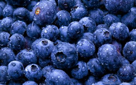 Blueberries - fresh, colour, blue, photography, fruit, dark, wall, exotic, wallpaper, image, spring, photo, macro, fruits