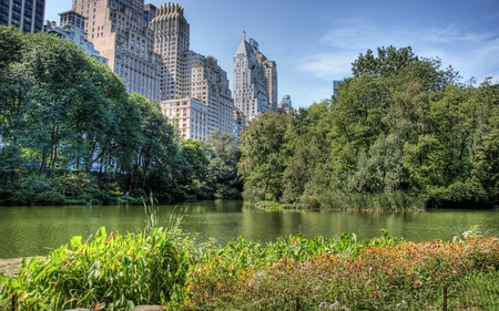 Central Park - architecture, new york, buildings, beautiful, sua, park, trees, manhattan, lake, skyscrapers, city, central park, green