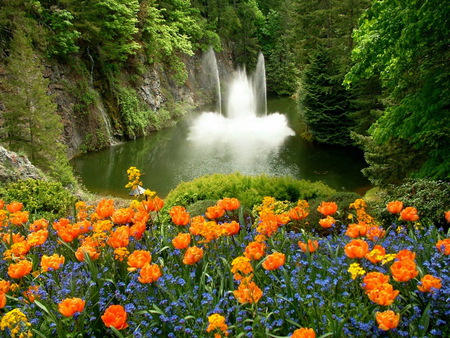 Perfect place - blue flowers, water, perfect place, waterfalls, plants, yellow flowers