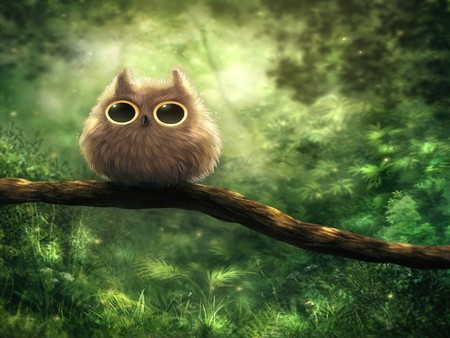 Owl - furry, cute, owl, green, nature, scared