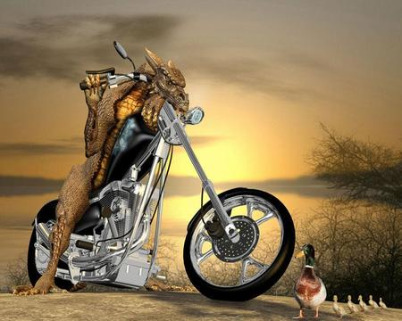 Good Driver - entertainment, aliens, birds, giveway, funny, animals, horizons, bike, vehicles, traffic, dragon, bikes, world, motorcycle, driver, colors, splendor, chopper, motorcycles, dragons, 3d, landscapes, beautiful, fantasy, transport, ducks