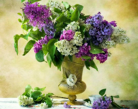 Aromatic Beauty - still life, lilacs, vase, flowers, gold vase, teacup