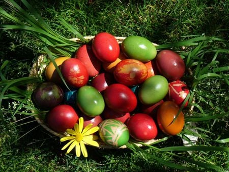 Easter eggs - colourful, eggs, easter, nature