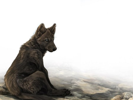 DARK WOLF - dark, ears, sitting, wolf, eyes