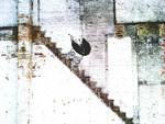 Banksy Buggy
