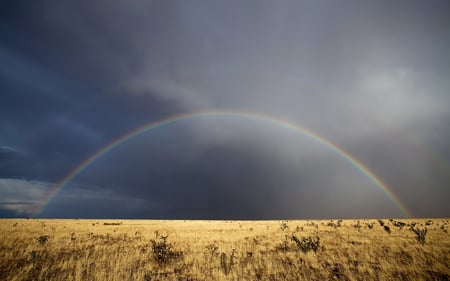 Light and Rain - deserts, storm, rainbow, clouds, nature