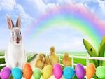 Easter Bunny Lane