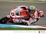 Ducati King