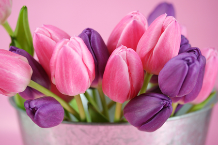 Tulips - fashion, entertainment, light, pink, elegantly, feminine, flowers, beautiful tulips, cool, tender, fragile, still life, forever, silver, gentle, harmony, photography, flower, tulip, metal, love, violet, sunshine, bunch, tulips, lavender, nice, vase, nature, beautiful, bouquet, purple, spring, green, photo