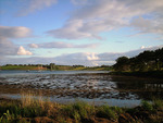 strangford lough killyleagh co down