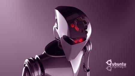 ubuntu-robot - window