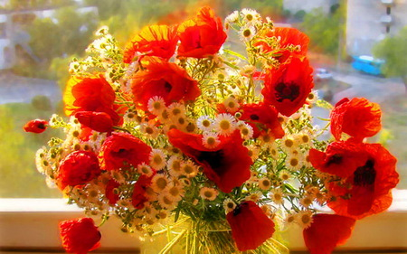 Wish for a day filled with sunshine - flowers, daisies, spring, window, sunny, yellow, red poppies