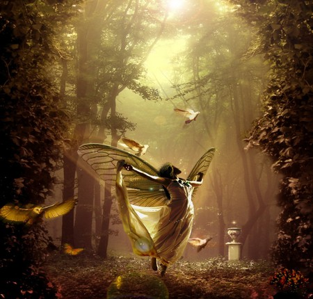 ENCHANTED FAIRY - wings, butterfly, doves, birds, sunlight, magic, angel, forest, beautiful, enchanted, fantasy, magical, fairy, butterflies, female, night