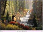 Bull Elk Falls