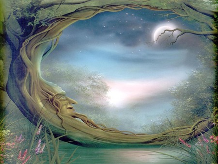 Mystical forest - forest, fantasy, fairy, mystical