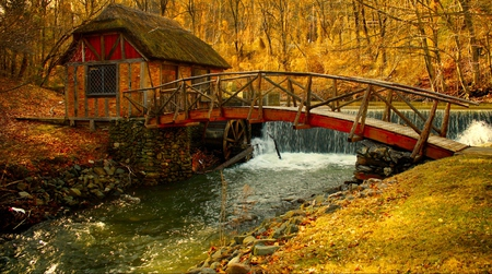 Autumn - architecture, stream, pretty, house, riverbank, grass, cabin, nice, watermill, stones, calm, splendor, waterfall, beauty, reflection, puente, lovely, houses, trees, water, fall, windmill, scenic, autumn, mill, woods, beautiful, old, leaves, bridge, river, forest, view, creek, autumn colors, peaceful, nature