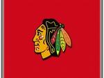 Blackhawks #1