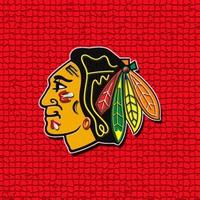 Blackhawks #8