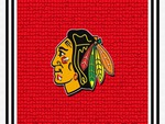 Blackhawks #8