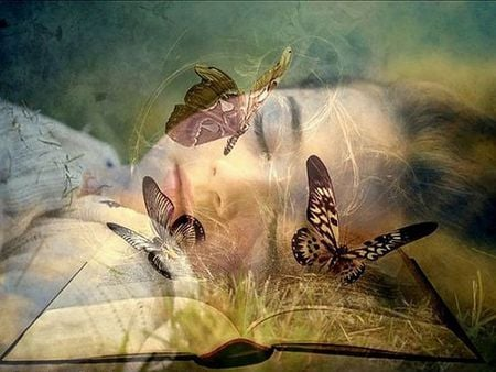 Wish I Were a Butterfly - sleep, wish, napping, book, dreams, nap, abstract, sleeping, photography, daydream, fantasy, girl, imagination