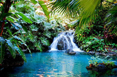 Tropical Fountain Waterfalls Amp Nature Background