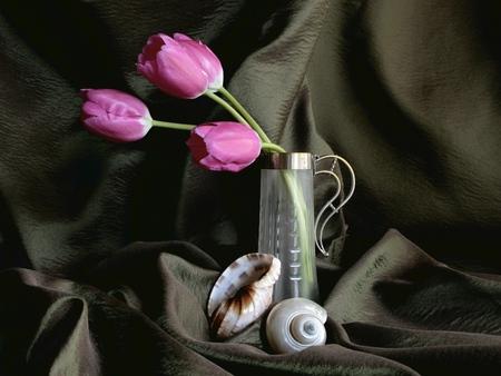 Simply Still Life - mussels, pink tulips, still life, live, black silk