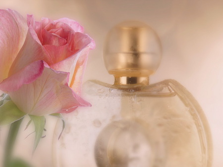 Fragrance of Love - green, rose, perfume bottle, fragrance, pink, sweet