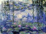 Monet water lillies