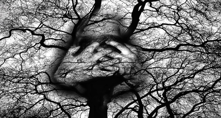 Scary tree - hands, tree, macabre, horor, scary, black, man, white