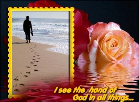 Walk for life with God - christianity, life, rose, religion, christ, jesus, flower, god, footprint