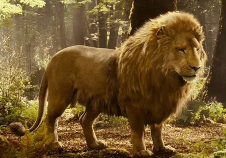 Aslan The Lion The Witch And The Wardrobe Other Animals