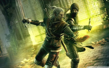 Assassins of Kings - hd, fighting, action, cg, the witcher, video game, assassins, adventure