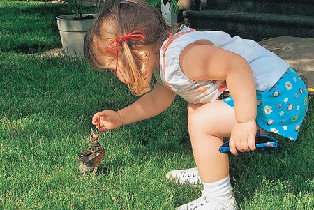 here little bird - bird, girl, grass, worm, childhood, yard