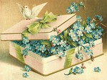 Box of Love F2