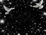 Doves in flight at night