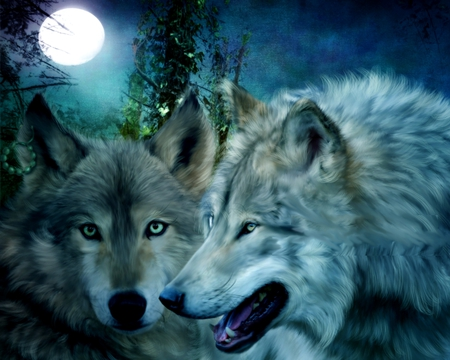 HONEYMOON COUPLE - moon, wild, wolf, wolves, couple, night, fullmoon