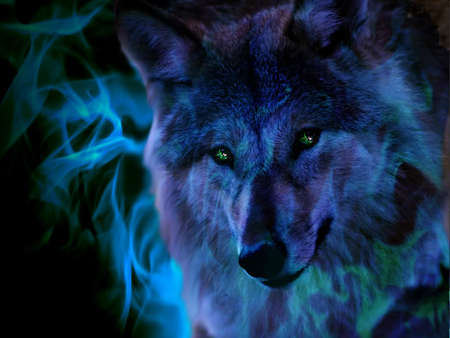 Fire Wolf - 3d, manipulation, wolf, abstract, animal