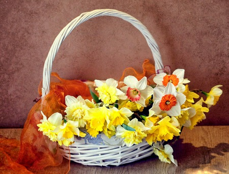 Spring Flowers - flowers, daffodils, still life, basket, scarf