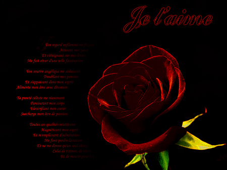 Je T Aime Photography Abstract Background Wallpapers On Desktop