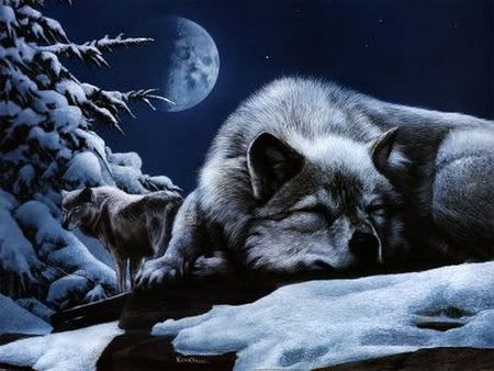 First Watch - trust, rest, gaurding, sleep, protecting, cg, resting, trees, abstract, watching, sleeping, moon, 3d, snow, night